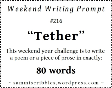 wk 216 tether